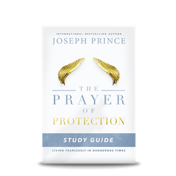 Store books joseph prince ministries the prayer of protection study guideliving fearlessly in dangerous times fandeluxe Images